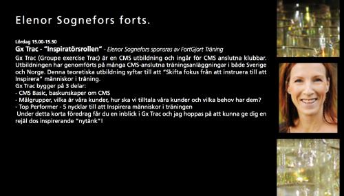 Elenor Sognefors