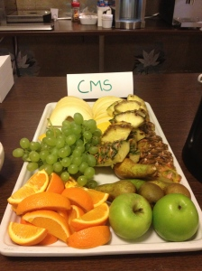 CMS Sweden